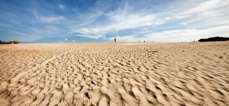 Top Places to Visit in Tasmania - Henty Dunes