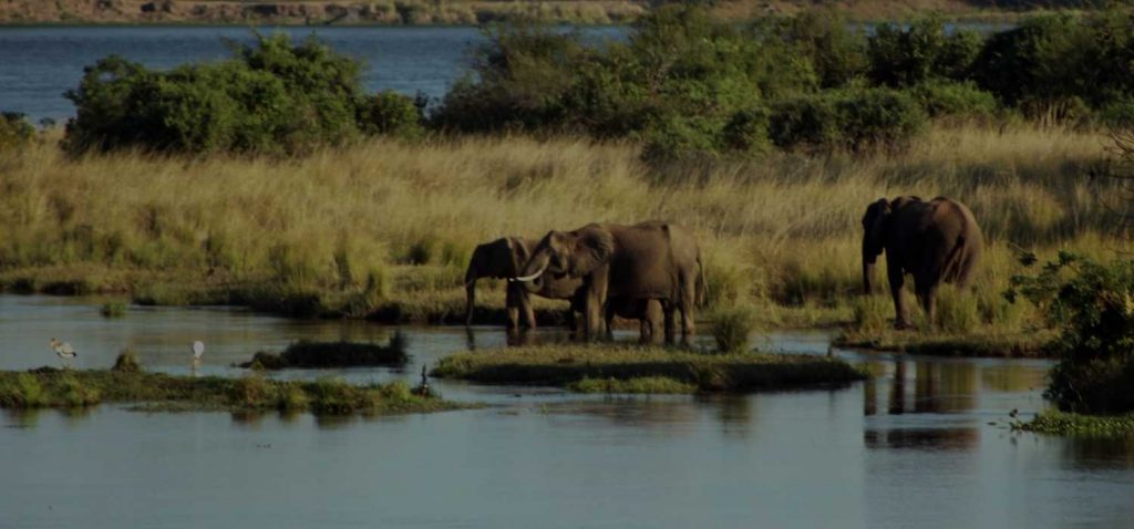 the Top Places to travel to when in Zambia - Solo Travellers